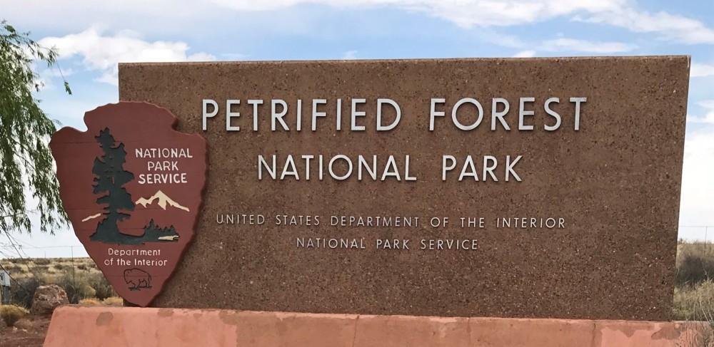 PetrifiedForest2