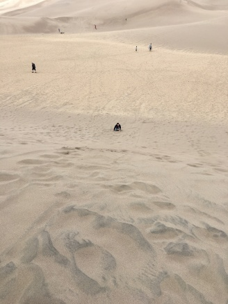 Sledding down the steep dune.